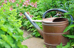 Old iron watering can in the garden Royalty Free Stock Photography