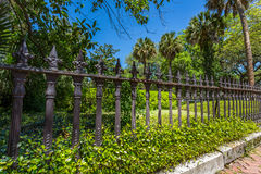 An old ironwork fence. In the downtown historic district of Savannah, Georgia royalty free stock photos