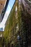 Old italian building green facade Stock Photo