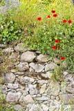 Old italian stone drywall. Royalty Free Stock Photo