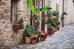 Old italian street with flowers Royalty Free Stock Photography