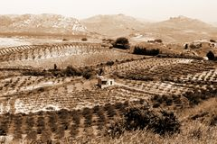 Old Italy ,rural Sicily Royalty Free Stock Photo