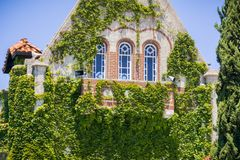 Ivy covered tower at the San Jose State University; San Jose, California Stock Images