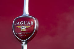 Old Jaguar car logo Royalty Free Stock Image