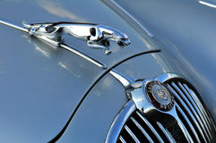 An old jaguar car symbol Royalty Free Stock Photography