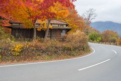 Old japan house style with maple tree. At Kawaguchiko Japan stock images