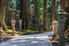 Old Japanese graveyard. Path through an old graveyard in Koyasan, Japan Royalty Free Stock Image