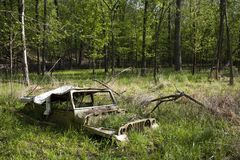 Old jeep. Abandoned in woods Stock Image