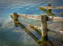 Old jetty into a calm lake Royalty Free Stock Image