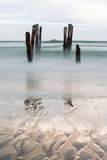 Old jetty piles at St. Clair Beach, Dunedin, New Zealand Royalty Free Stock Images