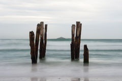 Old jetty piles at St. Clair Beach Stock Photography