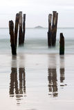 Old jetty piles at St. Clair Beach Royalty Free Stock Photography