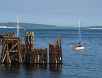 Old jetty in Port Townsend. An old jetty and sailboats at Port Townsend, Washington royalty free stock image