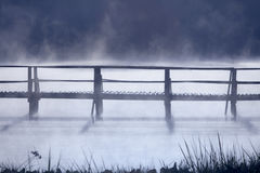 Old jetty walkway in morning Royalty Free Stock Photos