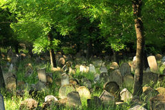 Old jewish burial place. In the czech repulic royalty free stock photography