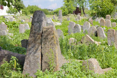 Old Jewish cementery in Berdychiv, Ukraine Stock Images
