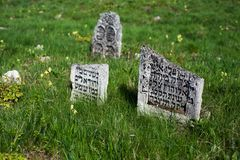 Old jewish cemetery. An image of old jewish cemetery in Medzhybozh (Ukraine Stock Photo