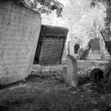 Old Jewish Cemetery. Gravestones found on old Jewish cemetery. Captured on film camera Royalty Free Stock Photo