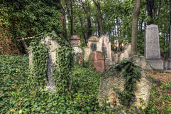 Old Jewish Cemetery. The Old Jewish cemetery at Kolin - one of the oldest landmarks of that kind in Bohemia. The beginning of the cemetery dates back to the 15th Royalty Free Stock Photos