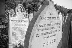 Old Jewish cemetery, Bratislava Royalty Free Stock Image
