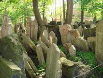 The old Jewish cemetery Royalty Free Stock Image