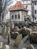 Old Jewish cemetery Royalty Free Stock Photos