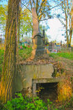 Old Jewish cemetery in Chernivtsy Royalty Free Stock Image