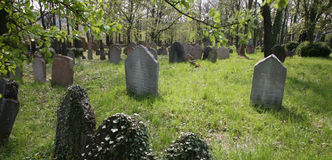 Old jewish cemetery in czech republic Stock Images