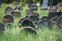 Old Jewish cemetery in Holesov Royalty Free Stock Photography