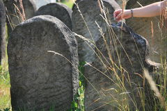 Old Jewish cemetery in Holesov royalty free stock photo