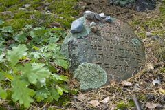 Free Old Jewish Cemetery In The Forest. The Cemetery Is Located In Poland. Unreadable Yiddish Text Inscriptions On The Stones. Stock Photography - 195018222