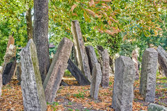 Old Jewish Cemetery in Prague Royalty Free Stock Photography