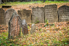 Old jewish cemetery in Trebic, Czech Royalty Free Stock Photo