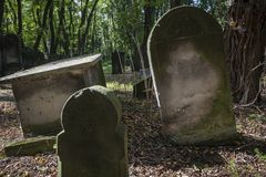 The old Jewish cemetery in Warsaw. The tombstones are uneven due to age Royalty Free Stock Photos