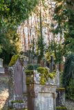 Old Jewish cemetery with weathered tombstones, Germany.  Royalty Free Stock Images