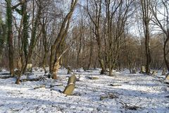Old Jewish cemetery. At the winter sunny day Royalty Free Stock Photography