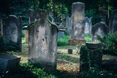 Historic Old Jewish cemetery in Wroclaw, Poland. Background for halloween design and text. The Old Jewish Cemetery in Wroclaw, formerly known as Breslau, Poland Royalty Free Stock Image