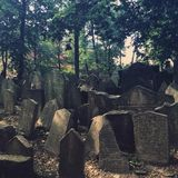 The Old Jewish Cemetry Stock Photo
