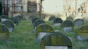 Old Jewish graves in the cemetery. Full of moss in slow motion stock video footage