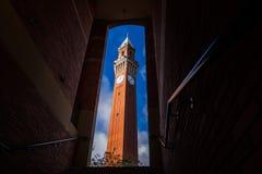 `Old Joe` clock tower at University of Birmingham, UK. Joseph Chamberlain Memorial Clock Tower, `Old Joe`, the tallest freestanding clock tower in the world Stock Photos