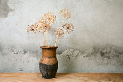 Old jug with dry flower royalty free stock photo