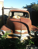 Old Junk Car with Cat. This photo was taken in Cambria,  CA, outside an antique shop Royalty Free Stock Image