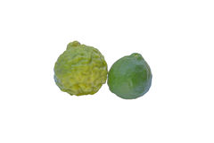 The Old Kaffir lime. Two Old Kaffir lime isolated on white background Stock Photos