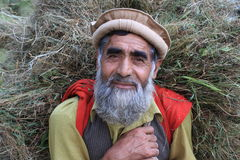 Old Kashmiri man carrying grass for his cattle Royalty Free Stock Photography
