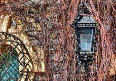 Old Kerosene Lantern Lamp Royalty Free Stock Photography