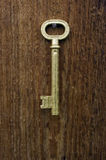 Old key. Old key of gold colour on a background of an old tree Stock Images