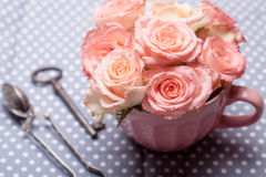 Old key and roses Stock Image