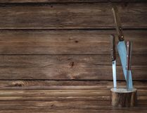 Kitchen knives stuck in a wooden stand. stock image