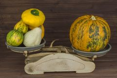 Old kitchen scale vegetable. Autumn harvest of pumpkins. Preparing for Halloween. Growing vegetables in a home garden. Royalty Free Stock Photo