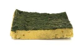 Old kitchen sponge on white background. Stock Image